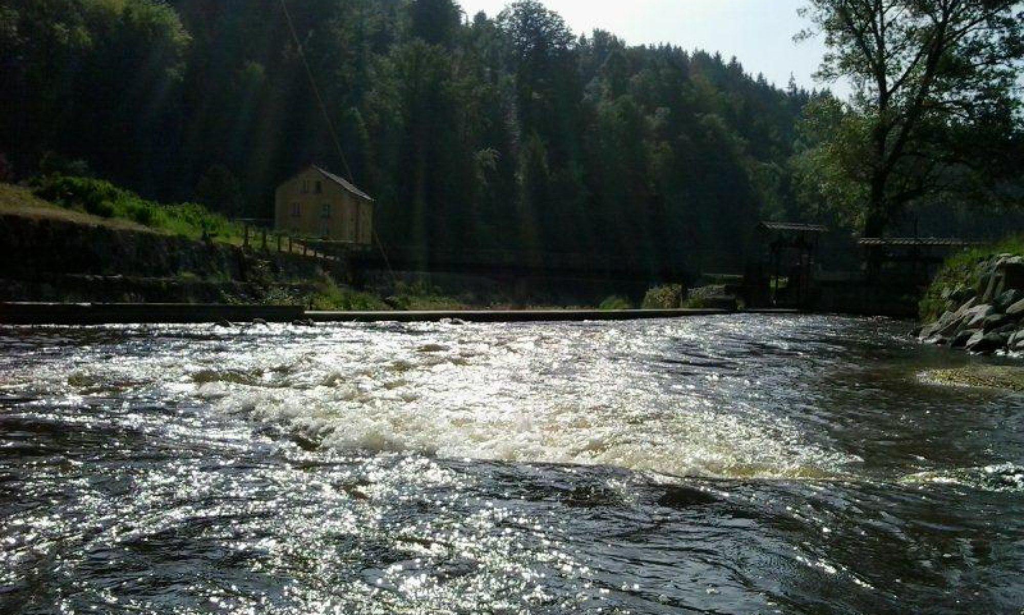 Fischereiverein Schwertberg